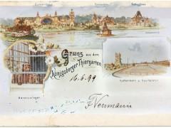 Открытка. Кёнигсбергский зоопарк. 1899 г.