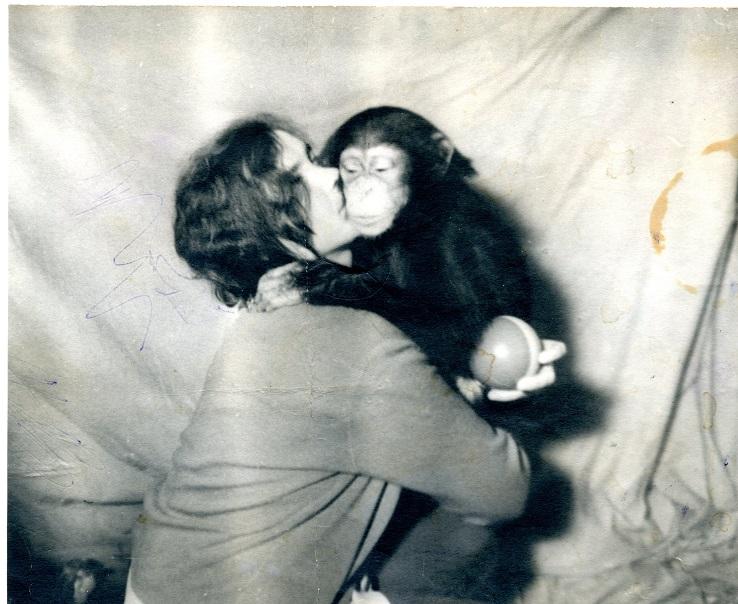 Белоусова Любовь Алексеевна с детенышем шимпанзе Каролиной 1974 г.