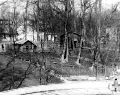 Вольер гривистых баранов. 1980е г. Из архива Калининградского зоопарка.