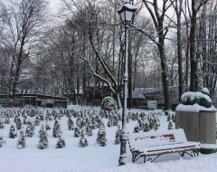 Зеленый лабиринт и памятник Г. Клаассу. Зима 2016 г. Из архива Калининградского зоопарка.